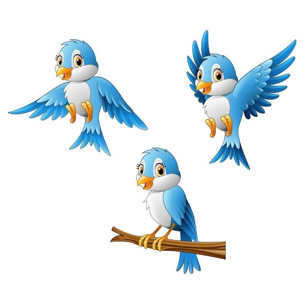 Blue bird cartoon Premium Vector