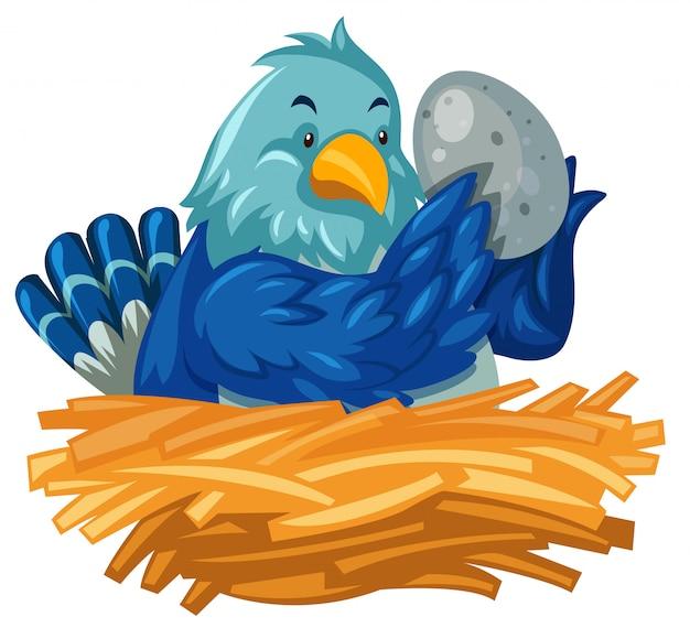 青い鳥の巣で卵をhatch化 無料ベクター