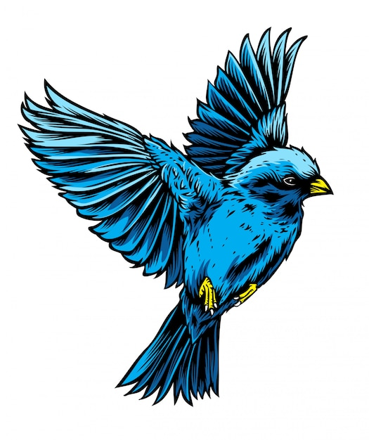 Blue bird vector Premium Vector