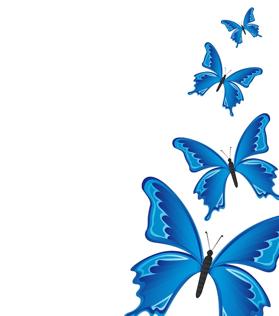 Blue buterflies over white background vector illustration Premium Vector