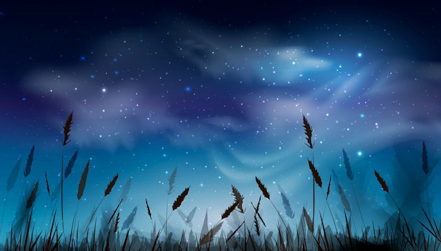 Blue dark night sky with lot of shiny stars, clouds natural background above field of grass. design of night sky background. illustration. Premium Vector