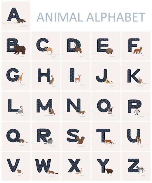 Blue english alphabet letters with animal tracks on it and animals in cartoon style nearby. Premium Vector
