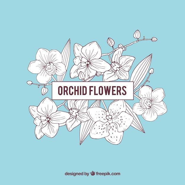 青色の蘭の花のフレーム 無料ベクター