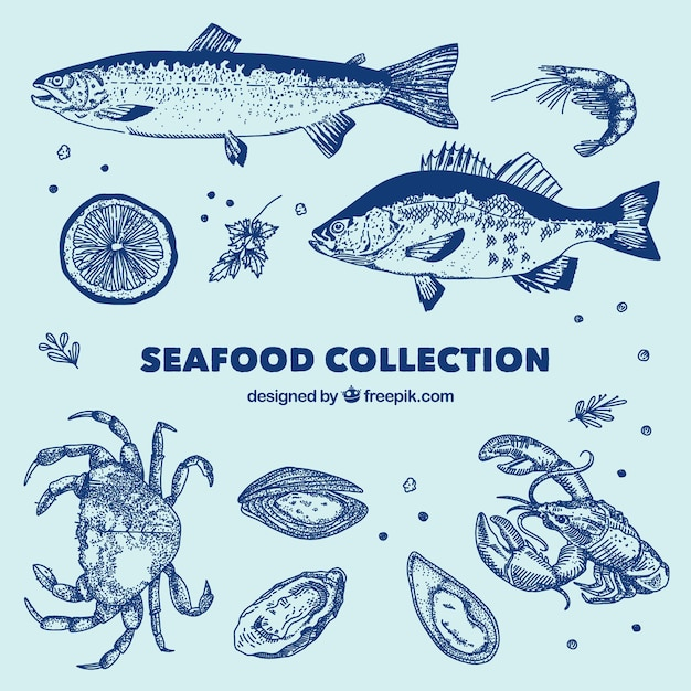 Blue seafood collection Free Vector