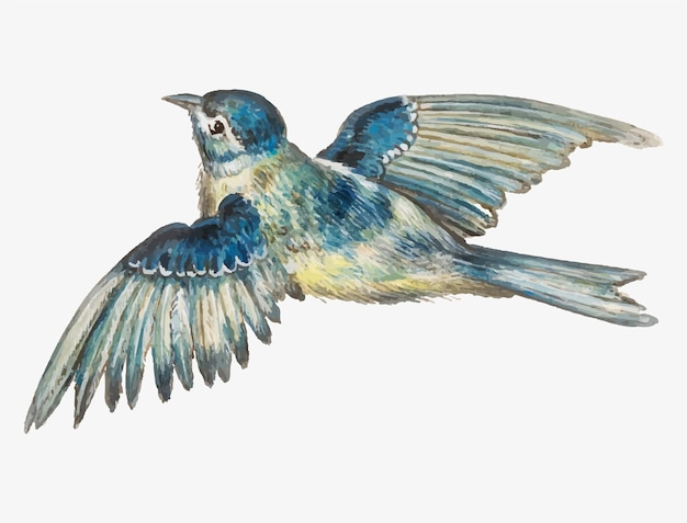 Blue tit in vintage style Free Vector