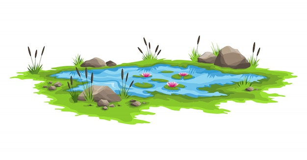 Blue water pond with reeds and stones around. natural pond outdoor scene. concept of open small swamp lake in natural landscape style. graphic design for spring season Premium Vector