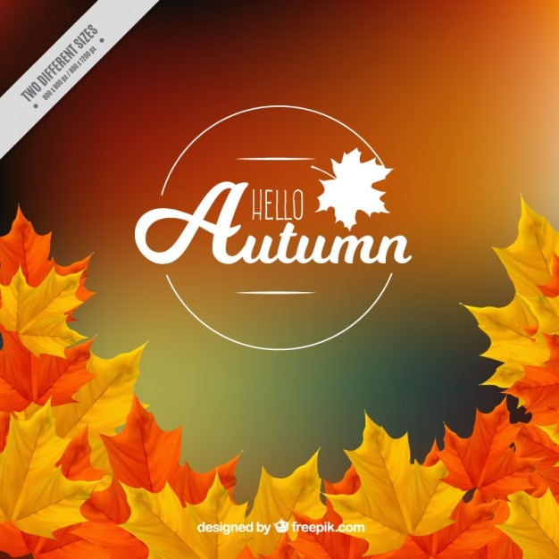 Blurred background autumn leaves Free Vector