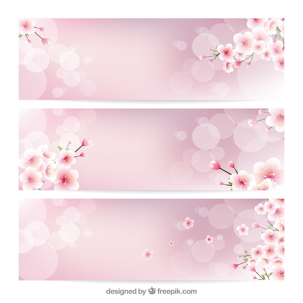 Blurred Banners With Decorative Cherry Blossoms Vector