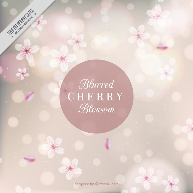 Blurred bokeh background with flowers Free Vector