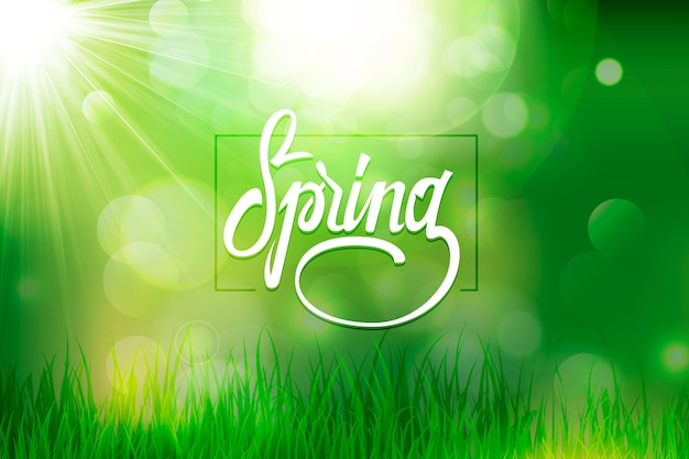 Blurred spring background with bokeh green effect and grass Free Vector