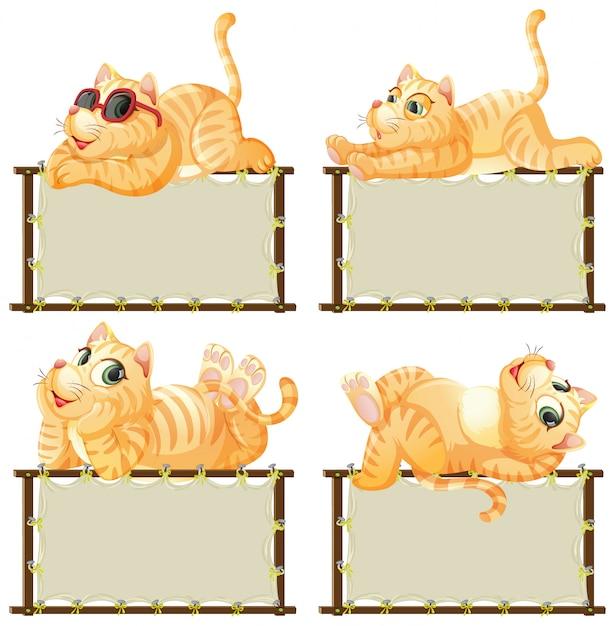 흰색 바탕에 귀여운 고양이와 보드 템플릿 프리미엄 벡터