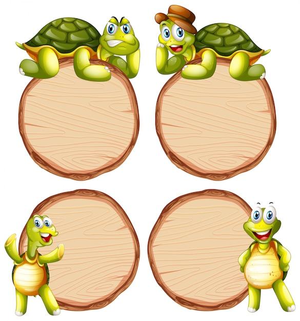Совет шаблон с милой черепахой на белом фоне Premium векторы