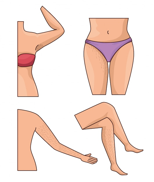 Body parts with hair Free Vector