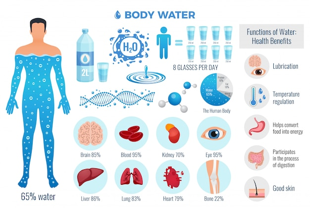 Body and water set with water functions, flat isolated vector illustration Free Vector