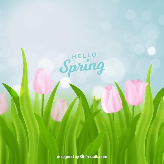 Bokeh spring background Free Vector