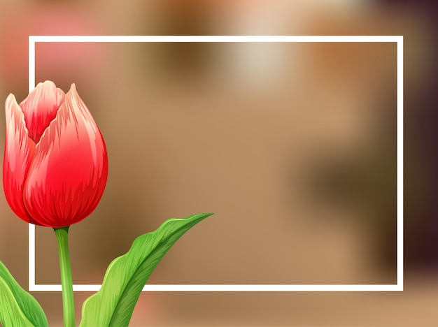 Border background with tulip flower Free Vector