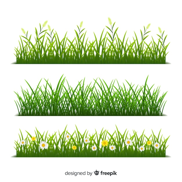 Border of grass realistic style Free Vector