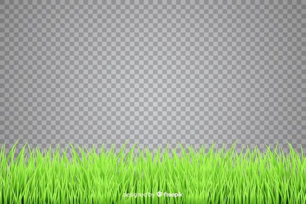 Граница из травы реалистичный стиль Premium векторы