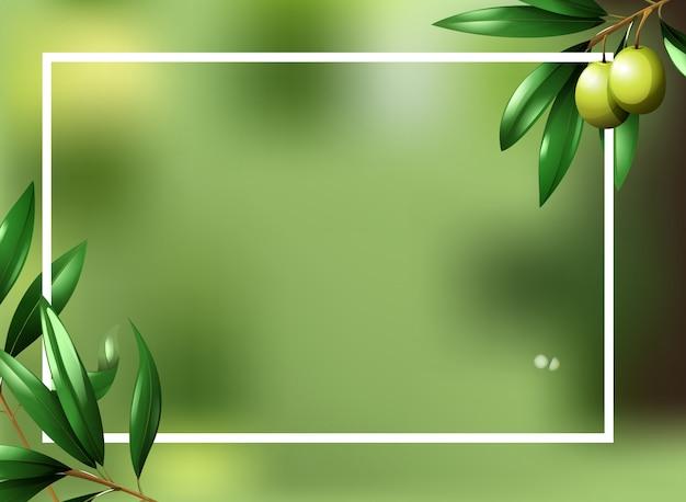 オリーブ植物のボーダーテンプレート 無料ベクター