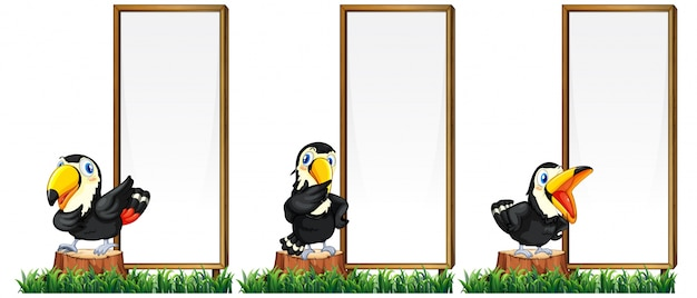 border template with toucan birds vector free download