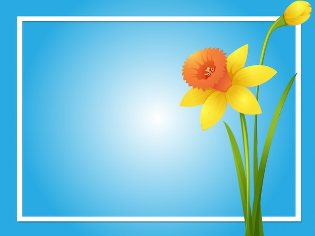 border template with yellow daffodil vector free download