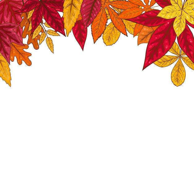 Граница с осенними листьями. элемент для эмблемы, плаката, карты, баннера, флаера, брошюры. иллюстрация Premium векторы