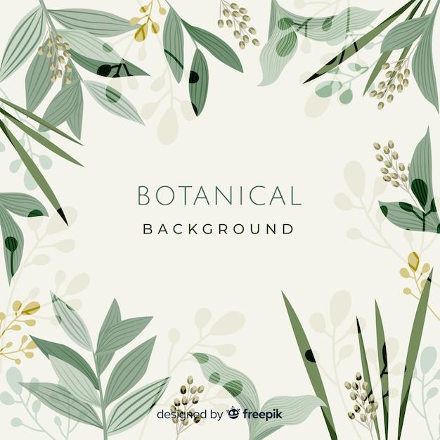 Botanical background Free Vector