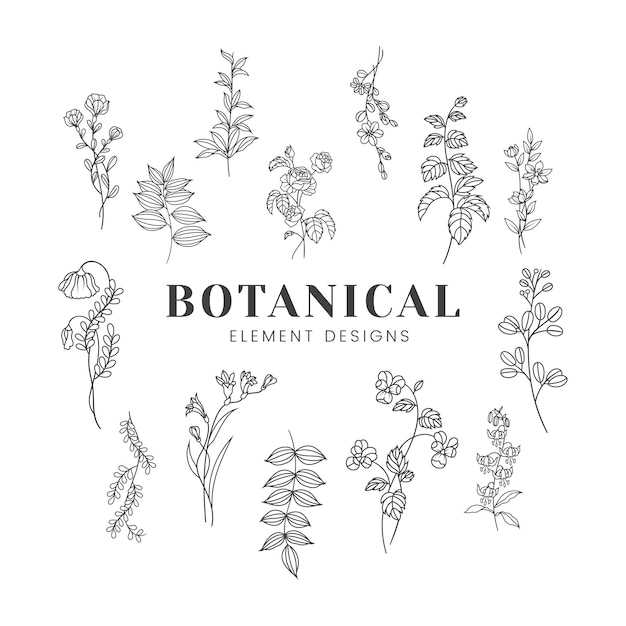 Illustrazione di mockup floreale botanica Vettore gratuito