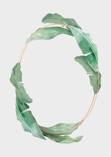 Botanical frame Free Vector