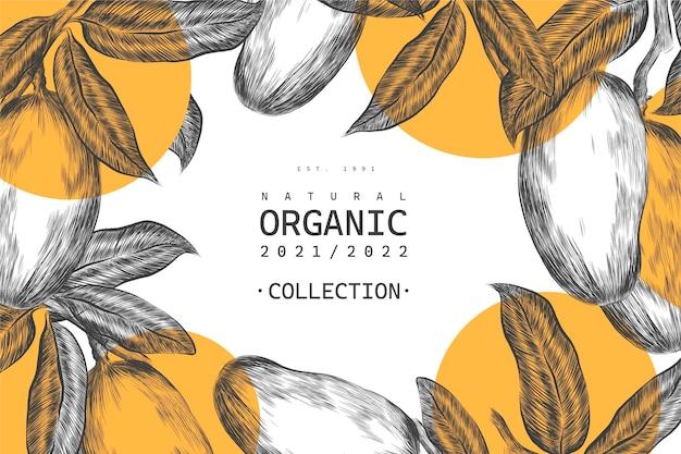 Фон иллюстрации ботанического дерева манго Premium векторы