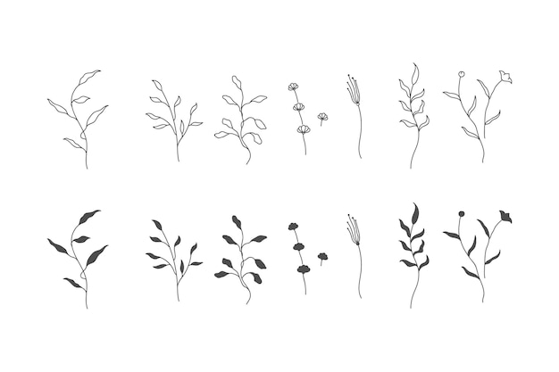 꽃과 나뭇 가지의 식물 세트. 식물의 수집. 프리미엄 벡터