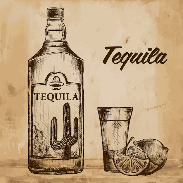 Bottle of tequila with lime and glass. painted by hand Premium Vector