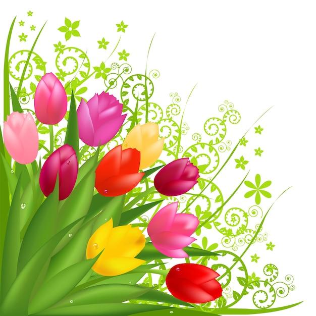 Букет цветов Premium векторы