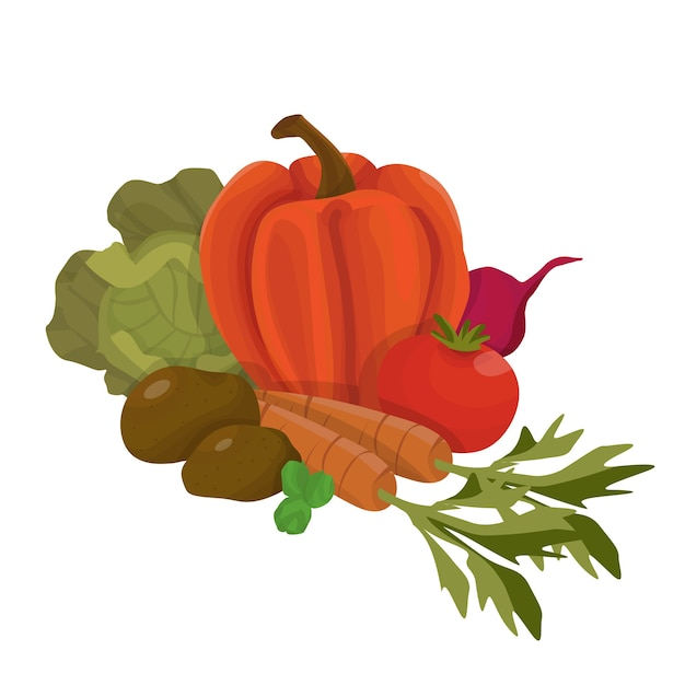 Букет из свежих сезонных овощей изолированных иллюстрация в мультяшном стиле Premium векторы