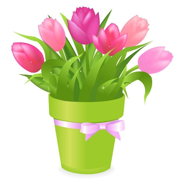 Букет разноцветных тюльпанов в зеленом горшке, на белом фоне, иллюстрация Premium векторы