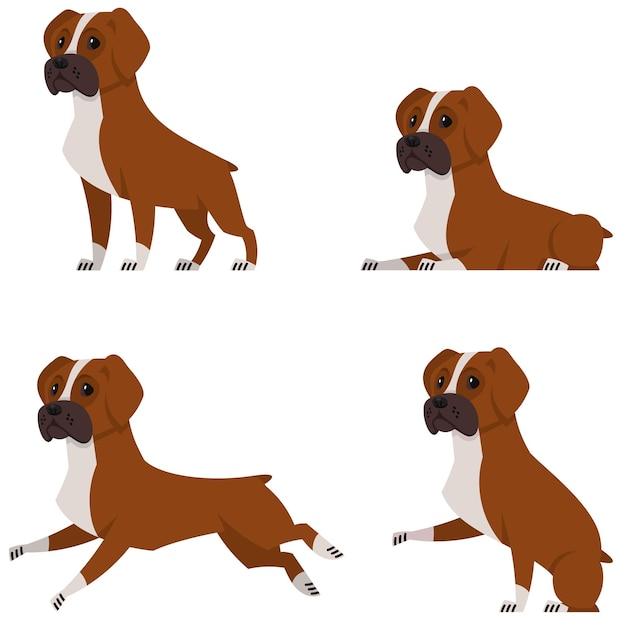 다른 포즈의 복서 개. 만화 스타일의 아름다운 애완 동물. 프리미엄 벡터