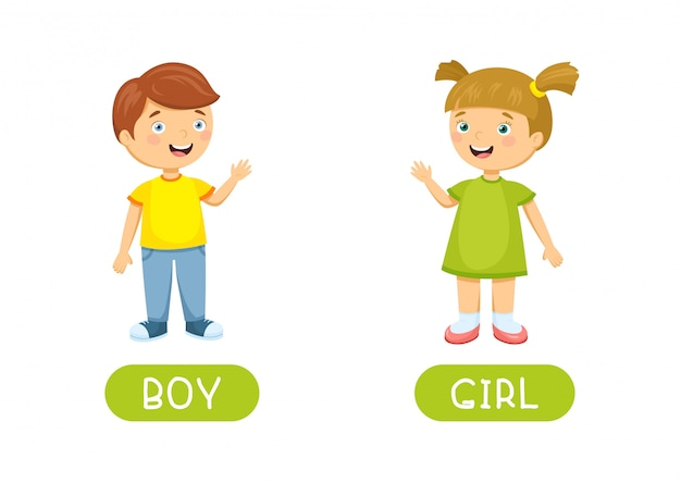Boy and girl. vector antonyms and opposites. cartoon characters illustration Premium Vector