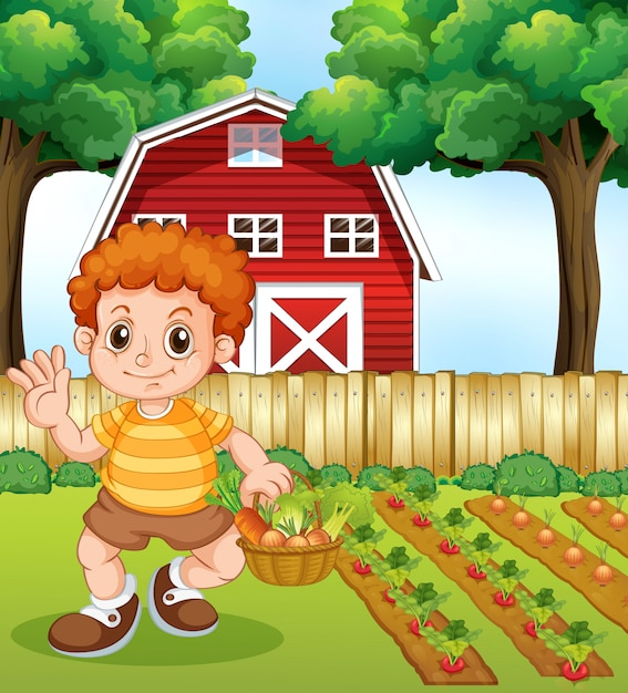 A boy harvest vegetable Free Vector