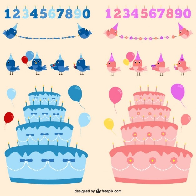 Boy or girl birthday party elements in blue and\ pink