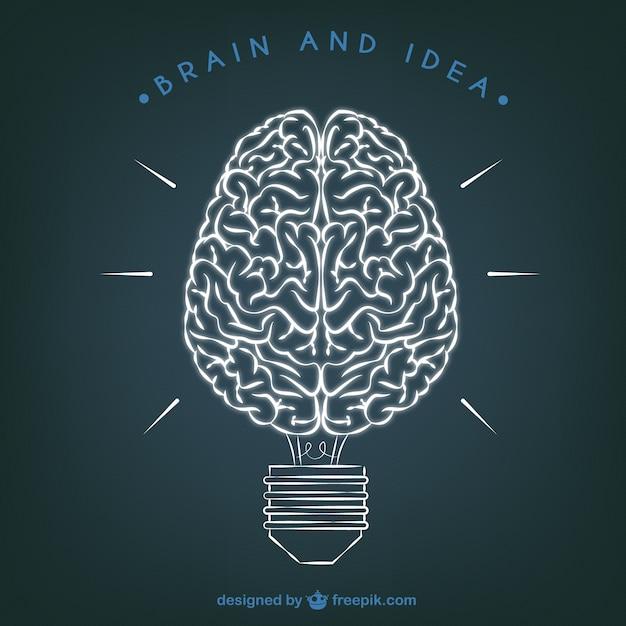 brain illustration typography wallpaper - photo #12