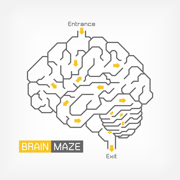 Brain maze. creative idea concept. outline of cerebrum cerebellum and brainstem Premium Vector