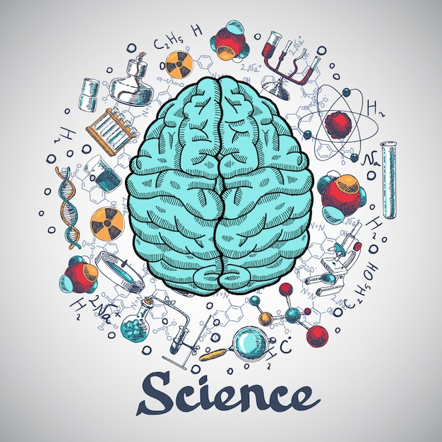 Brain sketch science concept Premium Vector