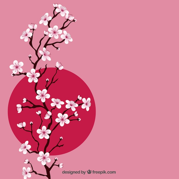 Branch with cherry blossoms Free Vector