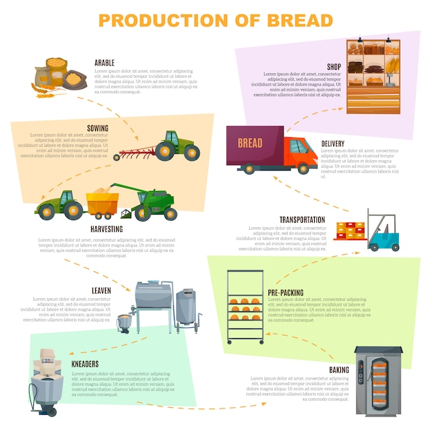 Bread production stages infographics Free Vector