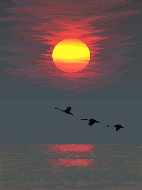 Bright colorful sunset over the sea with silhouettes of flying birds Premium Vector