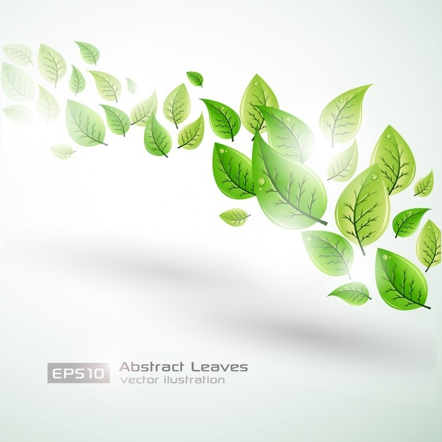 bright template background with green leaves vector free download