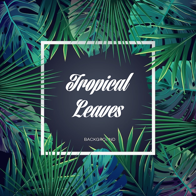 Bright tropical background with jungle plants. vector exotic pattern with palm leaves. Premium Vector
