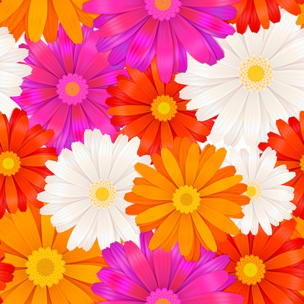 Brightdifferent colour gerbera flowers seamless pattern Premium Vector