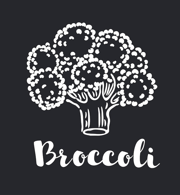 premium vector broccoli icon with long shadow black illustration isolated on green background for graphic and web design freepik