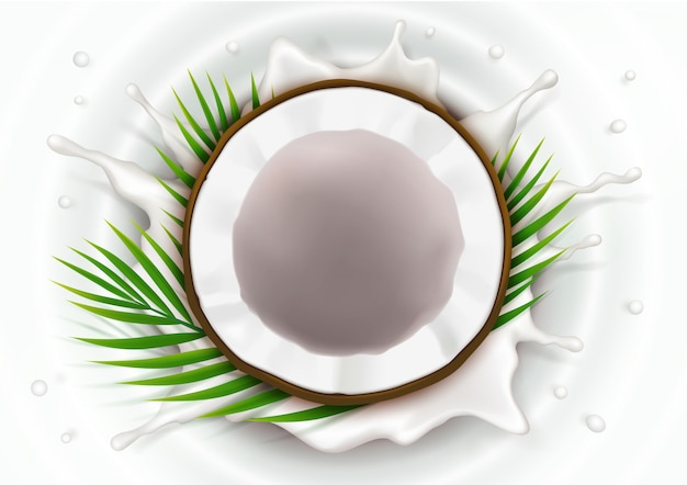 Broken coconut in milk splash Free Vector